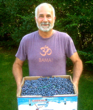 Bucket of Blueberries. What bucket will you need?